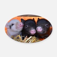 THREE LITTLE PIGS Oval Car Magnet
