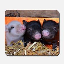 THREE LITTLE PIGS Mousepad