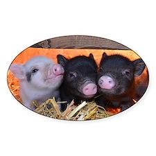 Three Little Piggies Decal