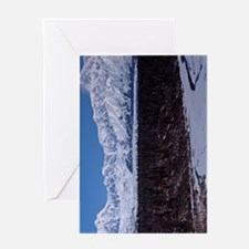 (9p) Denali 9323 Greeting Card