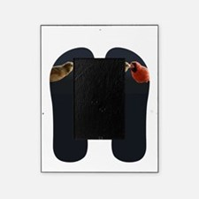 Cardinal flip flops Picture Frame