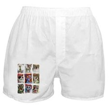9 zombie cats Boxer Shorts