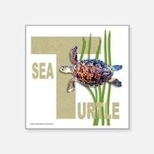 "HAWKSBILL SEA TURTLE Square Sticker 3"" x 3"""