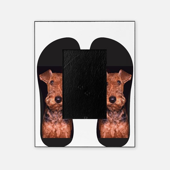 airedale flip flops Picture Frame