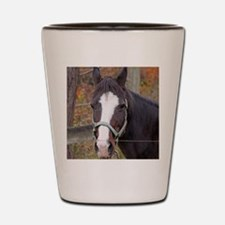 autumn horse Shot Glass