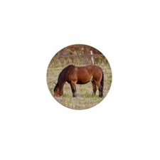 Autumn Horse Mini Button