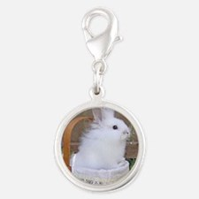 Bunny in a basket Silver Round Charm
