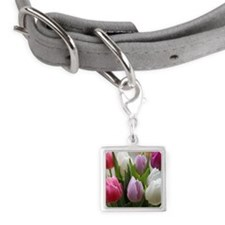 Dutch Tulips Small Square Pet Tag
