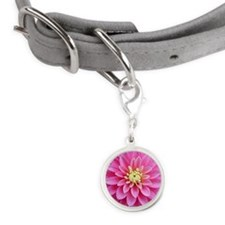 Pink Dahlia Small Round Pet Tag