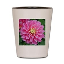 Pink Dahlia Shot Glass
