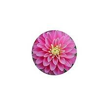 Pink Dahlia Mini Button