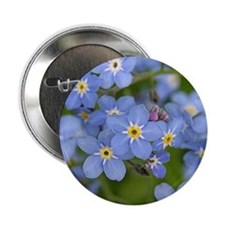 "Forget me nots 2.25"" Button"