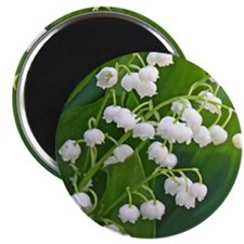 Lily of the Valley Magnet
