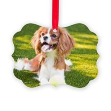 Happy Cavalier King Charles Spani Ornament