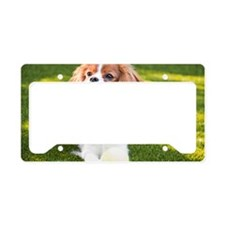Happy Cavalier King Charles S License Plate Holder