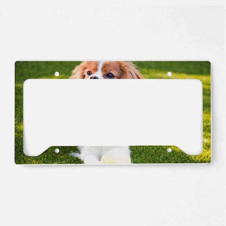 Happy Cavalier King Charles S License Plate Holder