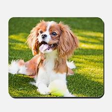 Happy Cavalier King Charles Spaniel Pupp Mousepad