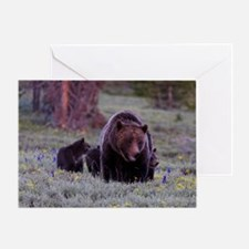 Grizzly Bear 399  her Triplet Cubs Greeting Card