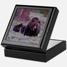 Grizzly Bear 399  her Triplet Cubs Keepsake Box