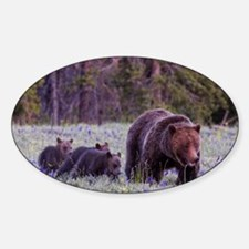Grizzly Bear 399 Decal