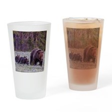 Grizzly Bear 399 Drinking Glass