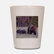 Grizzly Bear 399 Shot Glass
