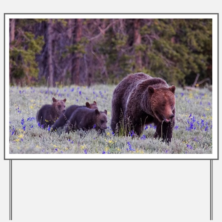 Grizzly Bear 399 Yard Sign