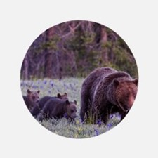 """Grizzly Bear 399 3.5"""" Button"""