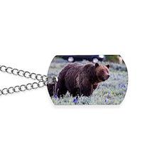 Grizzly Bear 399, Grand Teton National Pa Dog Tags