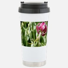 tiger - coinpurse Stainless Steel Travel Mug