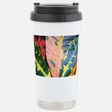 colors - coinpurse Stainless Steel Travel Mug
