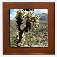 Saguaro National Park - Tucson, AZ Framed Tile