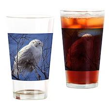 Snowy White Owl, Blue Sky Drinking Glass
