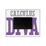 Calculus Picture Frames