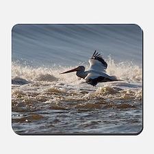 pelican 8x8 Mousepad
