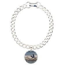 pelican 8x8 Bracelet