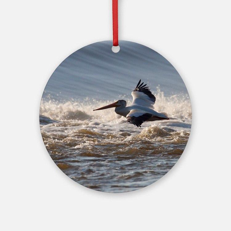 pelican 8x8 Round Ornament