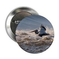 """pelican 8x8 2.25"""" Button"""