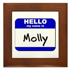 hello my name is molly  Framed Tile