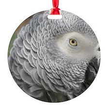 Grey Parrot Ornament