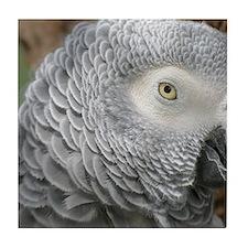Grey Parrot Tile Coaster