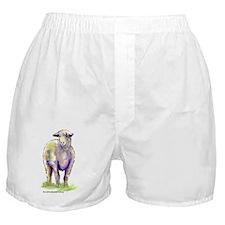 Little Lamb Boxer Shorts