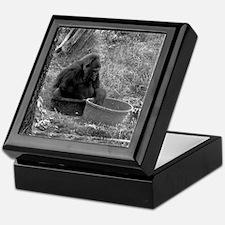 Gorilla in a Tub Keepsake Box