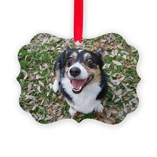 annabellecard Ornament