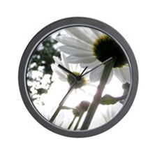 Winter Park Daisies Wall Clock