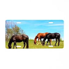 Horses Aluminum License Plate