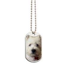 Hello there! Dog Tags