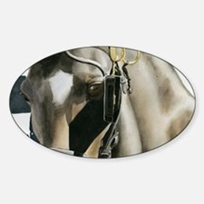 horse with blinkers Sticker (Oval)