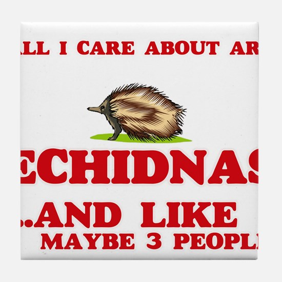 All I care about are Echidnas Tile Coaster