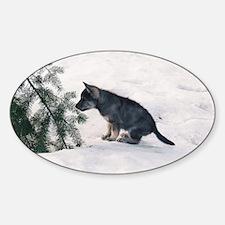 """""""Wolf  Dog  Cub"""" Sticker (Oval)"""